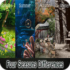 Four Seasons Differences 游戏