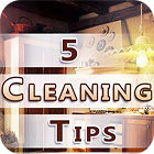 Five Cleaning Tips 游戏