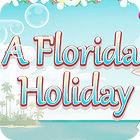 A Frorida Holiday 游戏