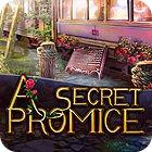 A Secret Promise 游戏