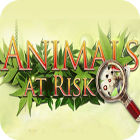 Animals At Risk 游戏