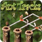 Ant Tracks 游戏