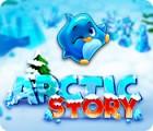 Arctic Story 游戏