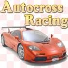 Autocross Racing 游戏