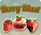 Berry Blast 游戏