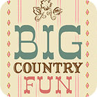 Big Country Fun 游戏