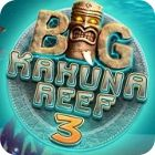 Big Kahuna Reef 3 游戏