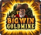 Big Win Goldmine 游戏
