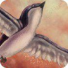 Birds Defender 游戏