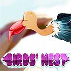 Birds Nest 游戏