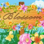 Blossom 游戏