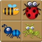 Bug Box 游戏