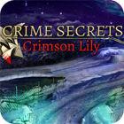 Crime Secrets: Crimson Lily 游戏