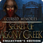 Cursed Memories: The Secret of Agony Creek Collector's Edition 游戏