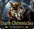 Dark Chronicles: The Soul Reaver 游戏