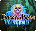 Dawn of Hope: Frozen Soul 游戏