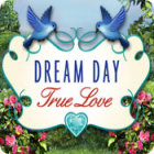Dream Day True Love 游戏