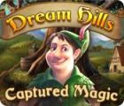 Dream Hills: Captured Magic 游戏