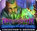 Dreampath: Guardian of the Forest Collector's Edition 游戏