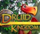 Druid Kingdom 游戏