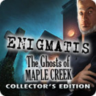 Enigmatis: The Ghosts of Maple Creek Collector's Edition 游戏