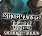 Enigmatis: The Ghosts of Maple Creek Strategy Guide 游戏