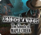 Enigmatis: The Ghosts of Maple Creek 游戏