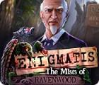 Enigmatis: The Mists of Ravenwood 游戏