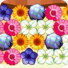 Flower Power 游戏