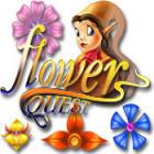 Flower Quest 游戏