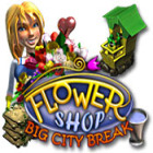 Flower Shop: Big City Break 游戏