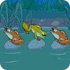 Frog Tag 游戏