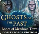 Ghosts of the Past: Bones of Meadows Town Collector's Edition 游戏