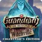 Guardians of Beyond: Witchville Collector's Edition 游戏