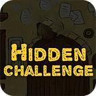 Hidden Challenge 游戏