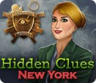 Hidden Clues: New York 游戏