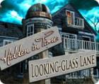 Hidden in Time: Looking-glass Lane 游戏