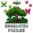 Hoyle Enchanted Puzzles 游戏
