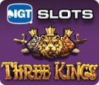 IGT Slots Three Kings 游戏