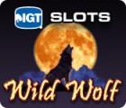 IGT Slots Wild Wolf 游戏