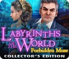 Labyrinths of the World: Forbidden Muse Collector's Edition 游戏
