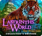 Labyrinths of the World: The Wild Side Collector's Edition 游戏