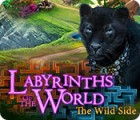 Labyrinths of the World: The Wild Side 游戏