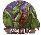 Magic Life 游戏