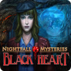 Nightfall Mysteries: Black Heart 游戏