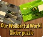 Our Wonderful World 游戏
