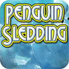 Penguin Sledding 游戏