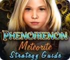 Phenomenon: Meteorite Strategy Guide 游戏