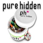 Pure Hidden 游戏