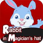 Rabbit In Magician's Hat 游戏
